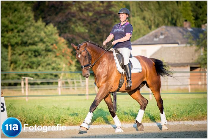 Paardenfotografie Den Bosch - Sportfotoshoot