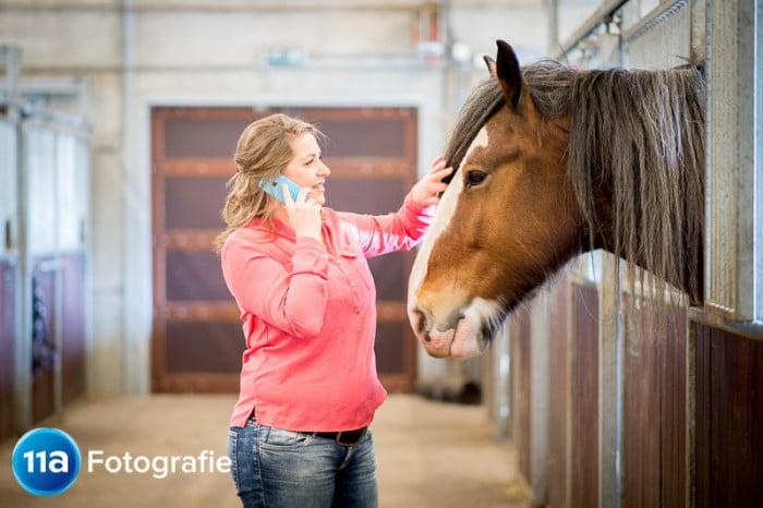 Paardenfotografie voor hippische ondernemers